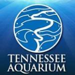 Tennessee Aquarium优惠码